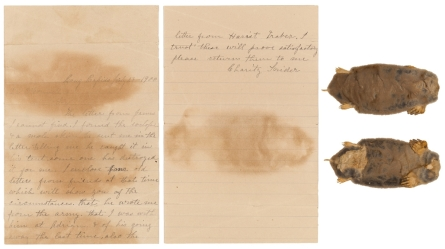 Letter from Charity Snider, with accompanying mole skin, from her Civil War Widow's Pension Application File. The paper bears the discoloration from the unusual enclosure. (WC843258, Record Group 15)