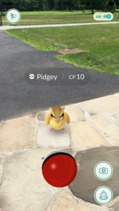 pokemon_go_pidgey
